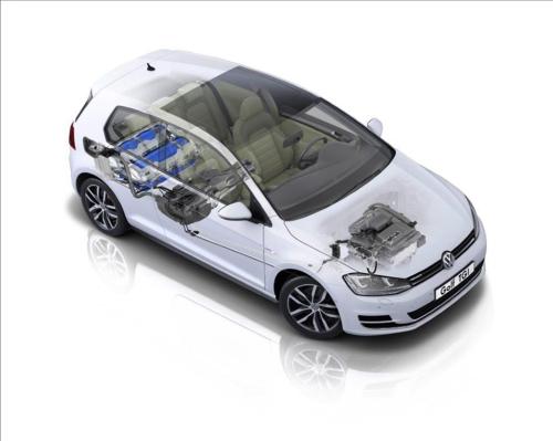 Der Erdgas-VW ist am wenigsten umweltschädlich. (Foto: VW)
